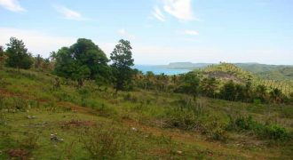 Land for sale in playa Rincon Las Galeras
