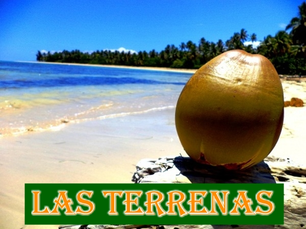 las-terrenas-city