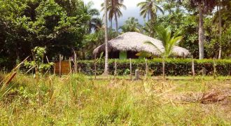 For sale building land near the sea, playa bonita